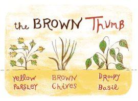 The Brown Thumb by Einav Aviram