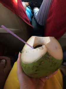 A young coconut was whacked open for me, and voila! The best coconut water I ever drank.
